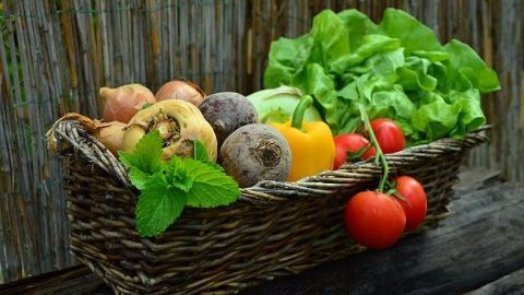 BigBasket- the online grocery store is born