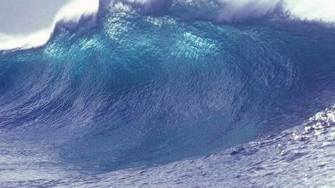 The tsunami that ensued!