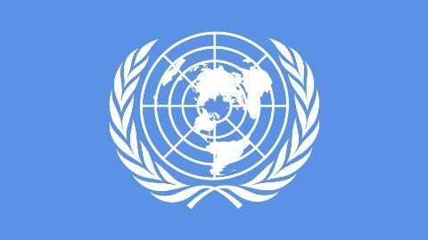 India dismayed at UN Security Council's lack of transparency