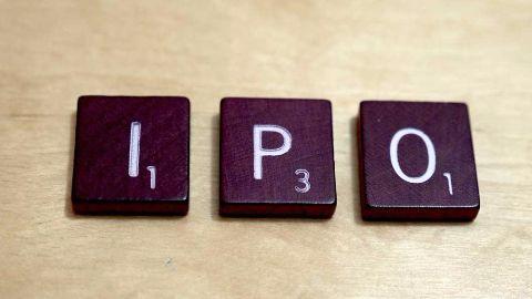 Indigo IPO set, ₹700-765 per share