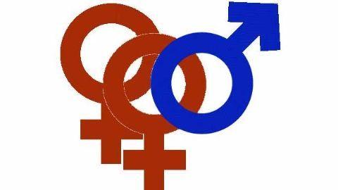 SC to examine polygamy, Muslim law