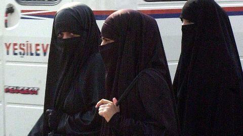 France bans niqabs