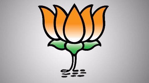 BJP distances itself and Pawar denies involvement