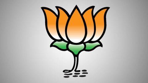 BJP: SC unaware of Jallikattu's cultural role